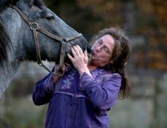 """Telling the Story, """"Born to Die"""" – How Nurse Mare Foals Are Getting a 2nd Chance at Life"""