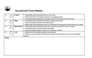 "An excerpt from the World Food Program's Observational Checklist. Observers must decide if the villagers have ""high anxiety"" or ""very high anxiety."""